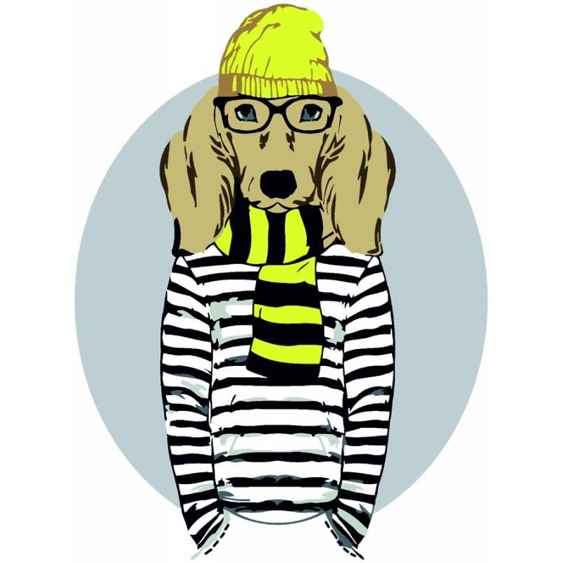 "Картина по номерам ""Stylish Dog"" ★☆☆ N00013265 купить в магазине ""Пустун"""