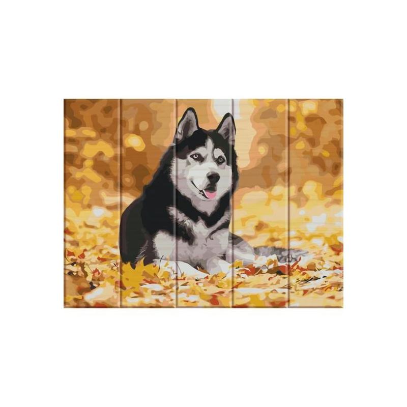 """Картина по номерам на дереве """"Хаски"""" ASW012 купить в магазине """"Пустун"""""""